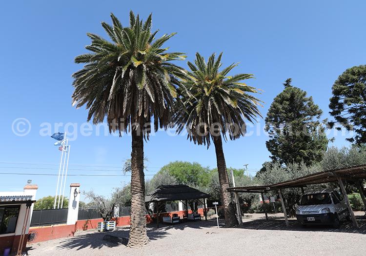 Bodega Alta Vista, Cuyo, Argentine avec l