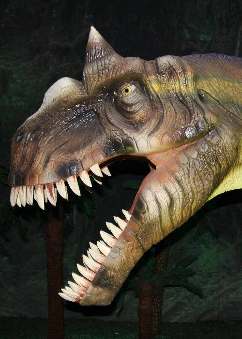 Le temps des dinosaures en Argentine 1
