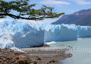 Au pied du glacier Perito Moreno