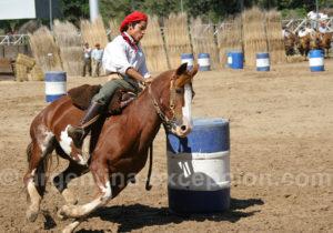 Courses de chevaux criollos