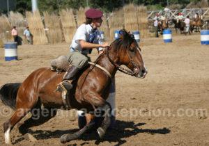 Courses de chevaux criollos, La Rural
