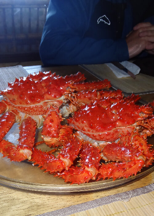 Crabe royal de Patagonie