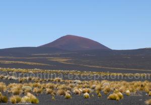Volcan Morado Payunia
