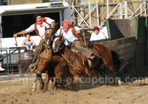Feria Nuestros caballos, Palermo