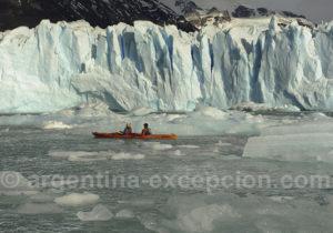 Kayak entre les glaces de Patagonie