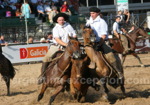 Salon du cheval, Palermo, La Rural