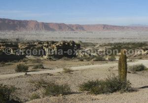 paysage parc Parc provincial Ischigualasto