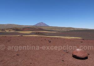 Réserve volcanique de La Payunia