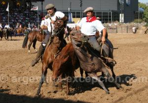 Salon du cheval, Palermo, Argentine