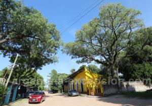 Ecole, Santa Ana de los Guácaras