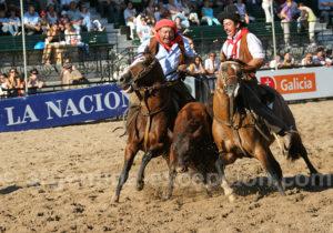 Feria Nuestros caballos, Buenos Aires
