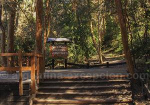 Entrée du Parc Los Arrayanes