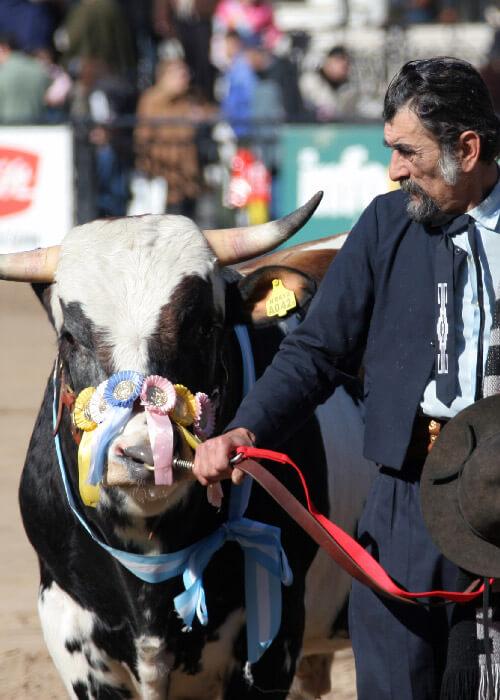 Exposition La Rural à Buenos Aires