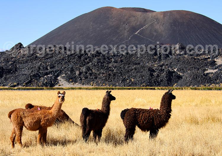 Volcan Antofagasta, Catamarca