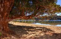 parc los arrayanes argentine