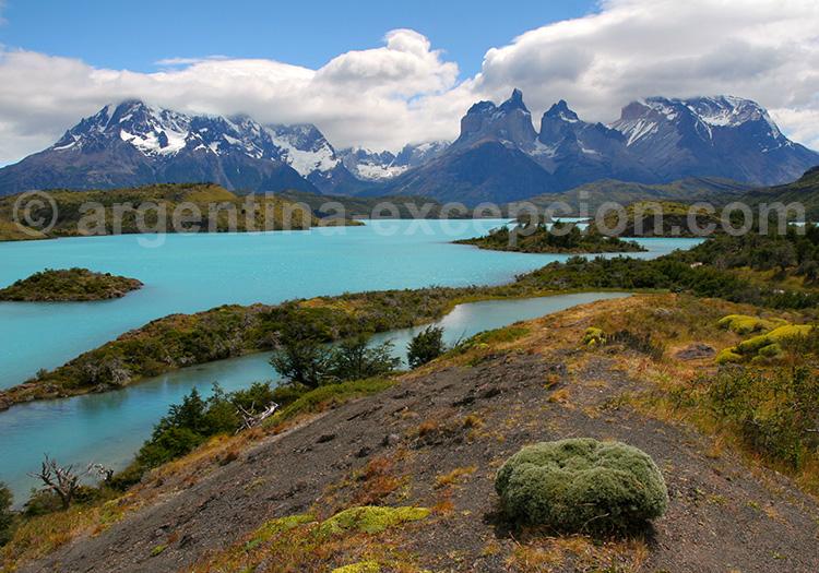 Torres del Paine & El Calafate Private Tour - Trip, Journey