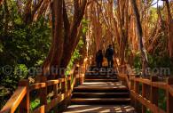 Los Arryanes park