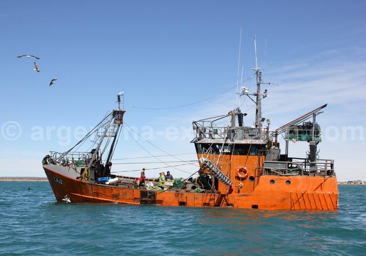 Pêcheurs de Rawson, Patagonie