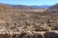Ruines de Tastil