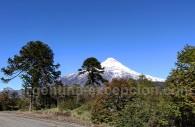 Parc national et volcan Lanín