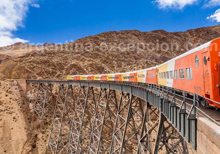 El tren de las nubes, Argentine