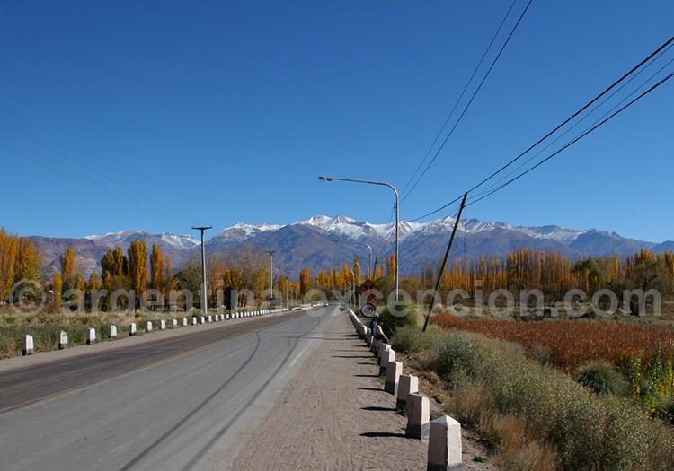 Upsallata, Mendoza