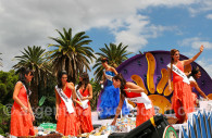 Fiesta de las vendimias, Mendoza