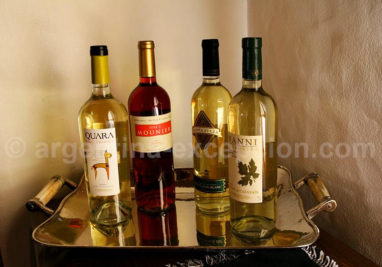 Les vins de Cafayate, Salta