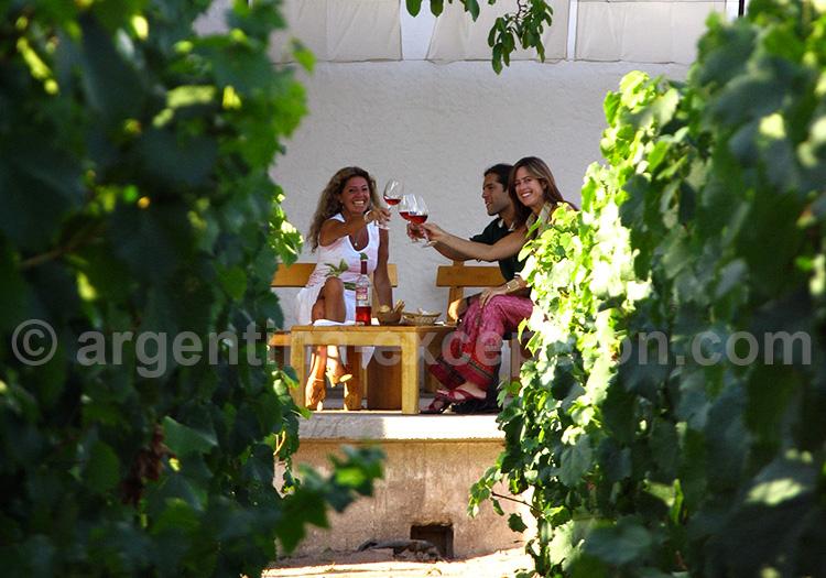 la route de vins à mendoza