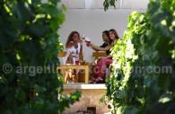 Wine degustation in Mendoza