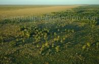 Géographie Esteros del Ibera