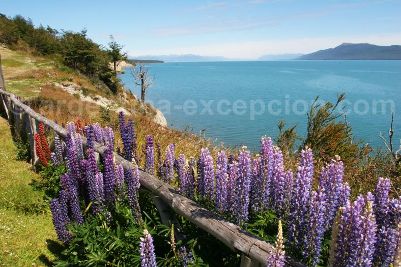 Lac Fargnano, Patagonie