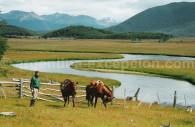 Estancia la Despedida - Tierra del Fuego
