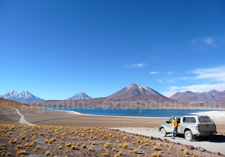 Laguna Miscanti, Atacama