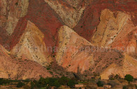 paleta del pintor purmamarca