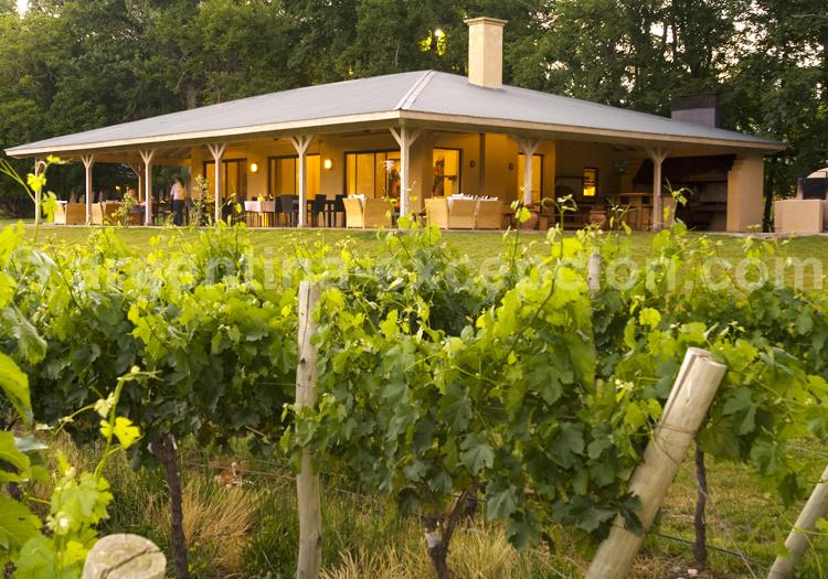 Posada Salentein, Viña y restaurante