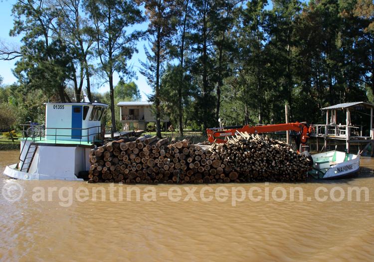 Légendes du delta du Paraná