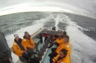Préparation pour la plongée avec les lions de mer