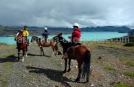Cheval au Parc Torres del Paine