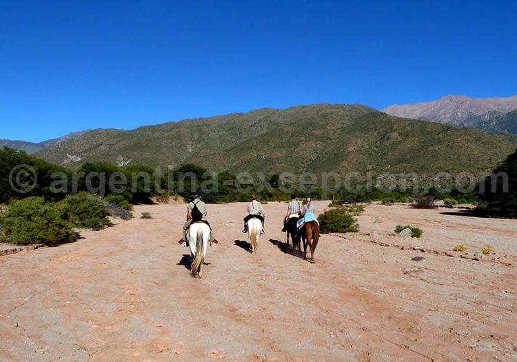Cheval à l'estancia Colomé, Salta