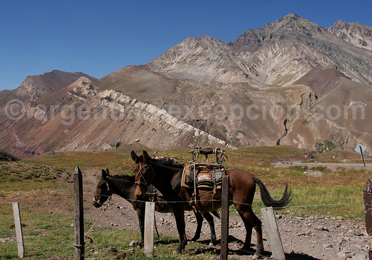 Climat dans le parc Aconcagua