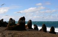 Excursion à Punta Norte