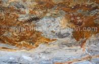 Fossiles dans le parc Ischigualasto