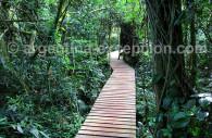 Parque de las Cataratas de Iguazú