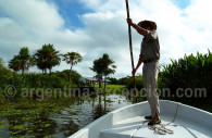 Laguna, Esteros del Ibera