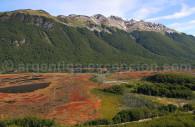 Tierra del Fuego - National Park