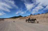 Ruta 40, Mendoza