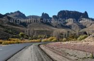 Route 40, Patagonie