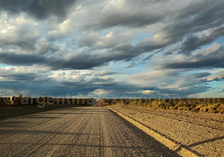 route 40 patagonie australe