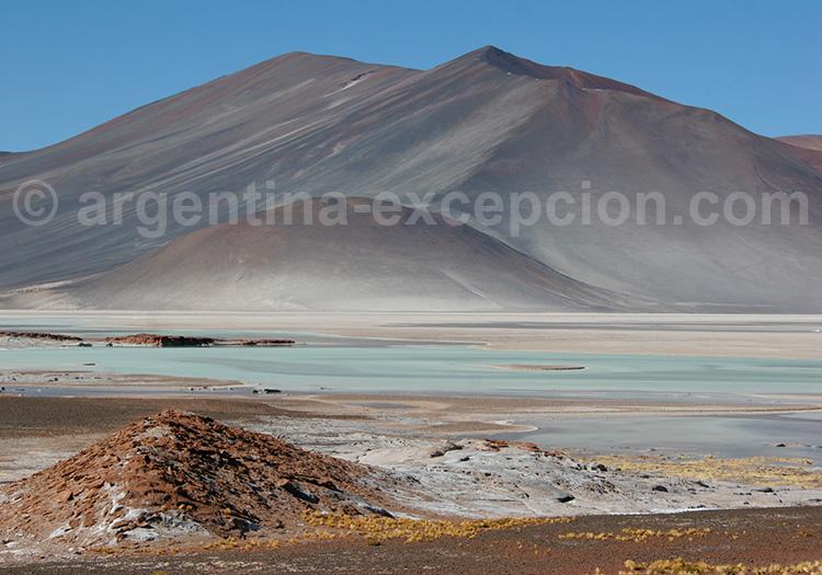 Salar de Talar, Atacama